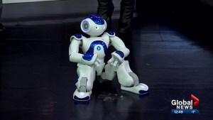 Meet Canada's first victim services' robot