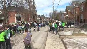 St. Paddy's day party in Kingston less rowdy then previous years