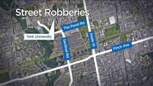 Chain of robberies prompts public safety alert in North York