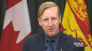 New Brunswick to review education, keep entry point for immersion