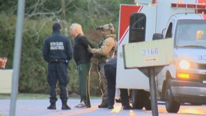 Surrey standoff ends peacefully with arrest