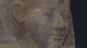 3,500-year-old visitor comes to Victoria