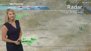 3-day forecast: Showers, frost risk and a brief bit of sunshine