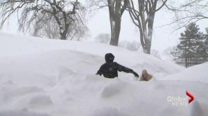 Global News reporter helps pregnant women caught in Halifax blizzard