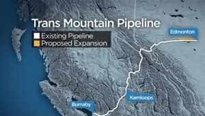 B.C. reacts to Ottawa's deal to purchase Trans Mountain pipeline