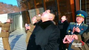 North Korea oversees test of new weapon: report