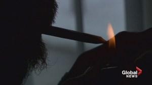 N.B. doctors release education program on marijuana health risks