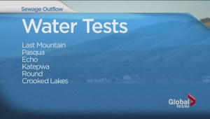 High level of E. coli found in 1 of 100 Qu'Appelle lake samples