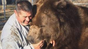 1,500-lb brown bear hugs, kisses and plays with caretaker