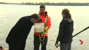 Day 1 of Montreal sewage dump