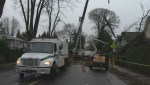 Day two of the cleanup after Thursday's windstorm
