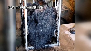 Massive glob of 'flushable' baby wipes clog parts of Charleston sewer well in South Carolina
