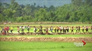 Rohingya refugees rush Myanmar as supervision indicted of genocide
