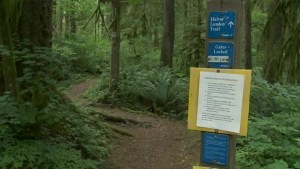 Fatal hiking accident kills teenager in Anmore