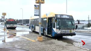 Halifax to examine public WiFi on Halifax Transit buses
