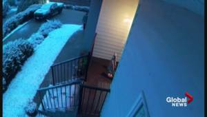 Vernon Boxing Day parcel theft porch pirate