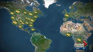 Edmonton Eskimos come from all over the world