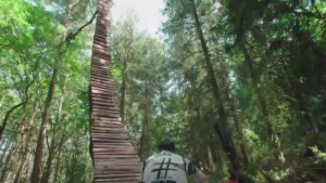 B.C. mountain biker's insane track goes viral