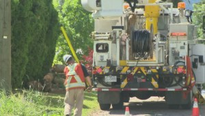 North Okanagan cleaning up after windstorm