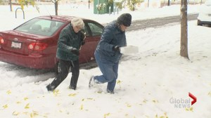 Calgarians pitch in to weather the storm: 'You like to go out and help'