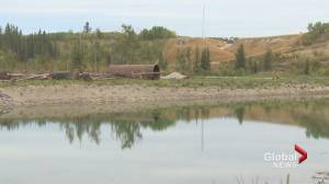 Southwest Calgary Ring Road environmental concerns debated in 3-day hearing