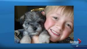 Red Deer family heart-broken after dog poisoned