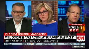 """CNN commentator claims Parkland students sorrow """"being hijacked by left wing groups"""""""