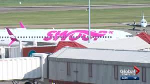 Swoop alters WestJet service between Vegas and Edmonton