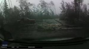 Driver attempts to navigate falling trees as severe weather hits Saskatchewan provincial park