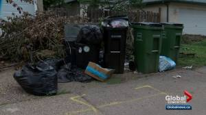 Report calls for major changes to how Edmonton deals with waste