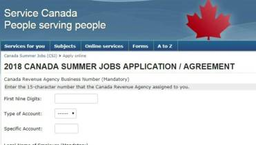 1,559 applications for summer jobs money rejected after