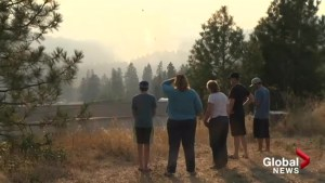 Munro Wildfire near Peachland aided by provincial state of emergency