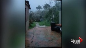 Puerto Rico residents record Hurricane Maria whip homes with wicked wind and rain