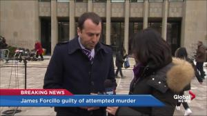 Prominent Toronto attorney says James Forcillo verdict is strong statement on police use of force