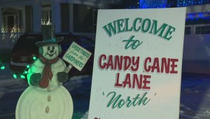 Evolution of Edmonton's Candy Cane Lane