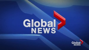 Global News at 5 Lethbridge: Mar 20