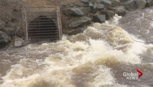 Halifax making plans to address recurring flooding problems