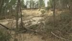 Ten West Kelowna properties at risk following mud slide