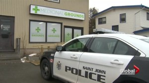 Medical marijuana dispensaries raided in Saint John