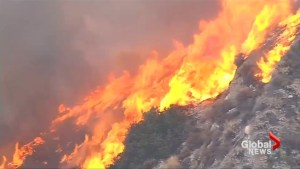 Brush fire torches 15 acres near Los Angeles