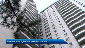 This is what every renter in Toronto needs to know about their rights
