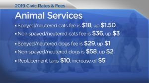 A look at Saskatoon's civic rates and fees heading into 2019