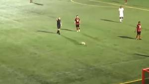 Furry field invader storms the pitch at Edmonton FC game