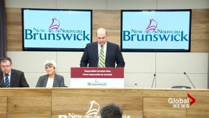 NB Liquor and Cannabis NB CEO resigns, headed to 'greener pastures'