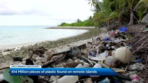 414 million pieces of plastic found on remote islands