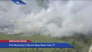 Developing: Fire breaks out in Burns Bog (09:03)