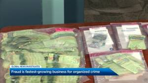 Fraud is fastest-growing business for organized crime