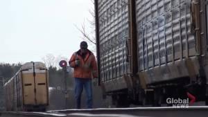 CN rail cars detach near Colborne, Ont.