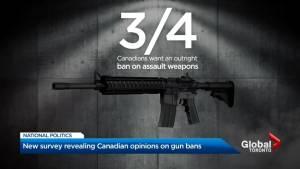 Majority of Canadians support ban on handguns, assault rifles: Angus Reid Institute