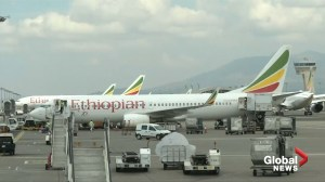 Ethiopian Airlines pilots reportedly turned off anti-stall software, but it re-engaged before crash